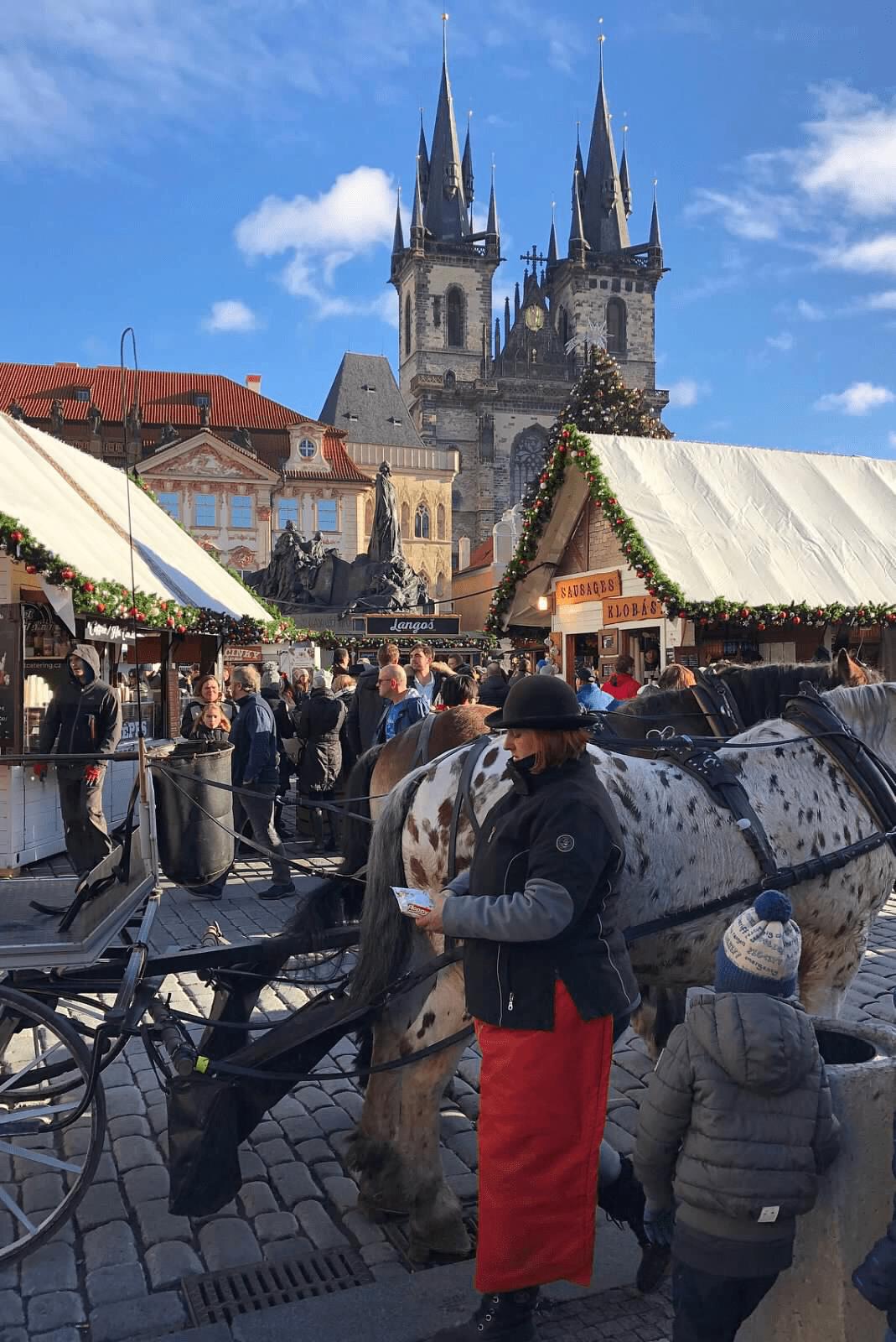 spotted horse, church, Prague market