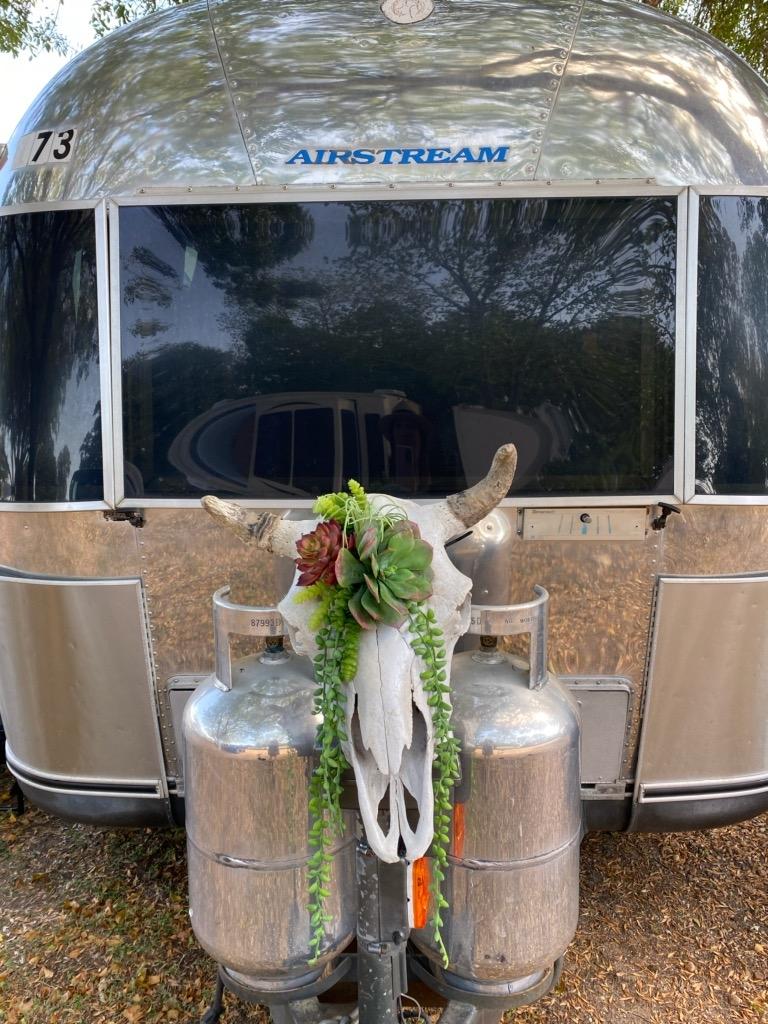 airstream camper, steer skull planter